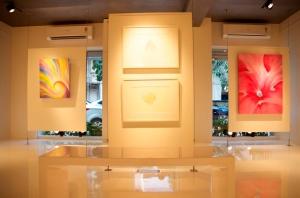 Cosmic Heart Gallery